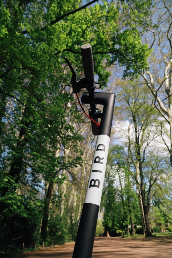 How Bird is working to make its scooters a truly sustainable transportation option   DeviceDaily.com