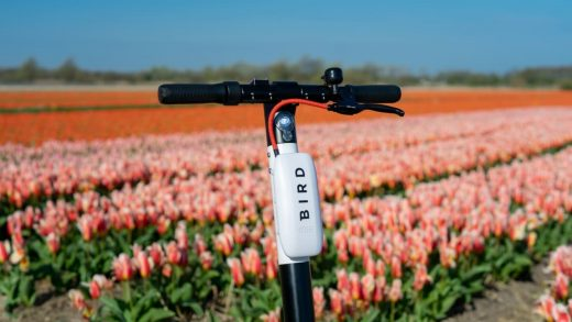 How Bird is working to make its scooters a truly sustainable transportation option