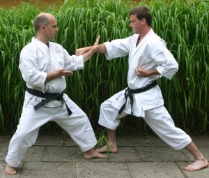 Karate School Owner Has No Right To Sue Over Search Ads, Google Says