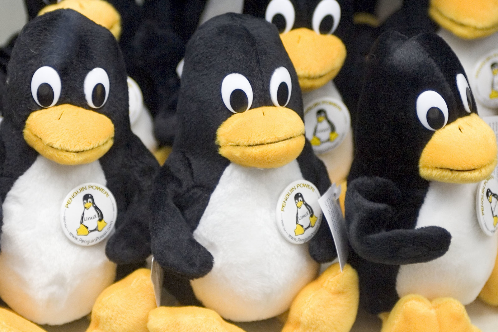 South Korea's government will switch to Linux over cost concerns | DeviceDaily.com