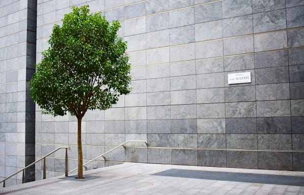 Milan is embarking on a bold plan to plant 3 million trees | DeviceDaily.com