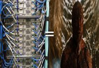 Resisting and Reducing Enterprise Storage Downtime