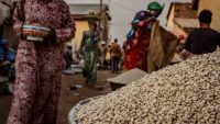 How a fierce debate over GMO could determine the future of agriculture in Africa