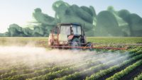 Why do synthetic chemicals seem more toxic than natural ones?