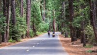 You can now ride around national parks with a little extra electric assistance