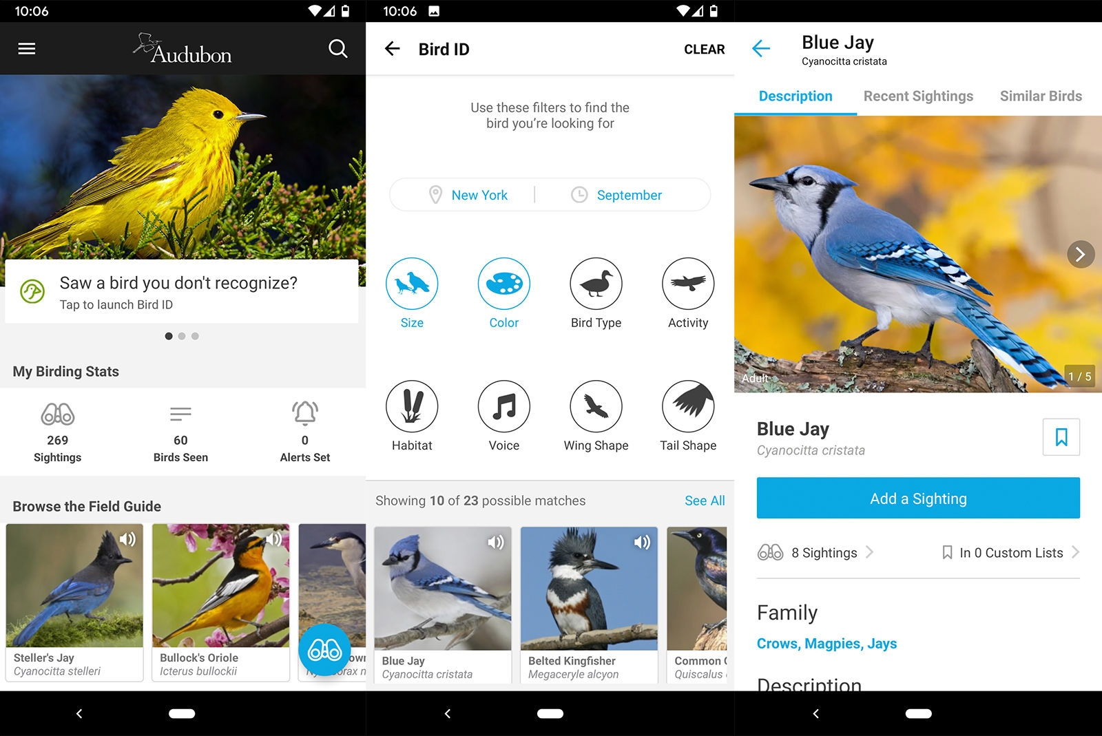Tech that helped me fall back in love with birdwatching | DeviceDaily.com