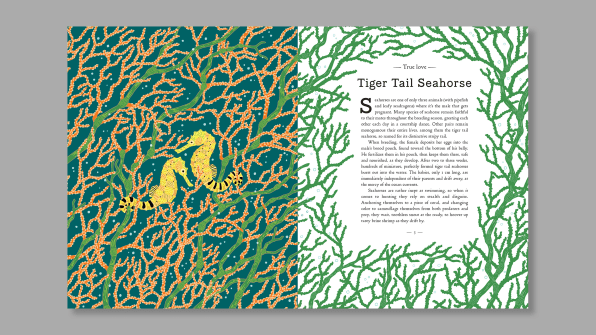 This gorgeous book teaches kids about the plight of endangered animals | DeviceDaily.com