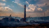 4 levers to build a better global policy to stop the Amazon fires