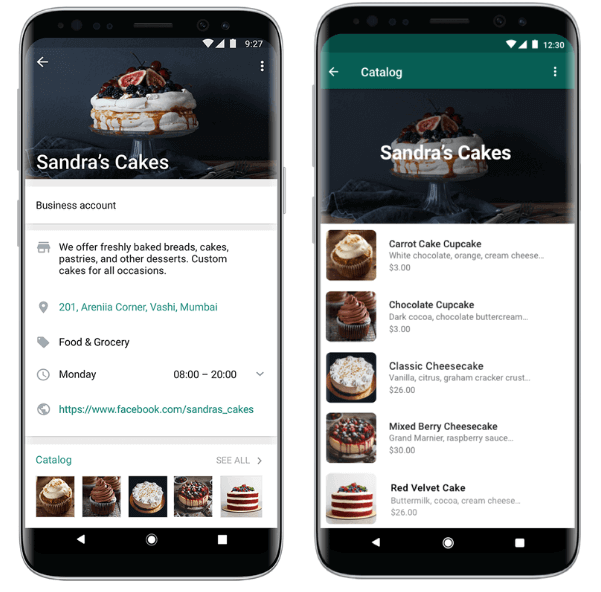 WhatsApp rolls out SMB product 'Catalogs' to support local discovery and commerce   DeviceDaily.com