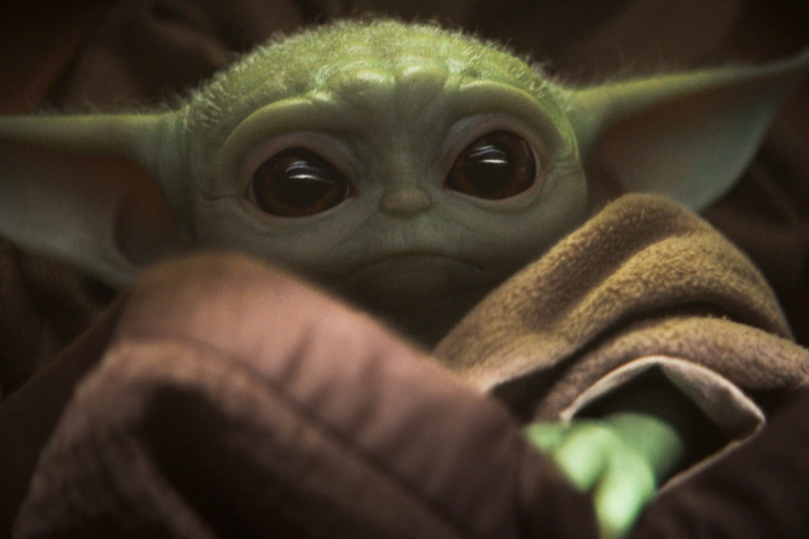 Google's 2019 search trends mark a big year for Baby Yoda and 'Endgame' | DeviceDaily.com