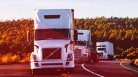 Celadon truck drivers turn to Facebook as thousands left stranded and jobless by bankruptcy