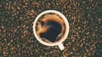 Forget the tech bubble. Craft coffee is the next boom industry