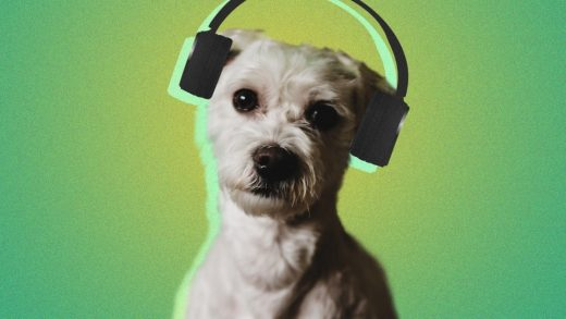 Spotify thinks it can generate a playlist your pet will love