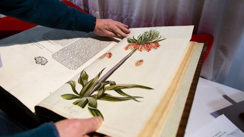See some of the rarest books from NYC's Antiquarian Book Fair | DeviceDaily.com