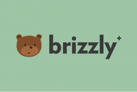 Twitter client Brizzly+ launches with 'undo' tweet feature