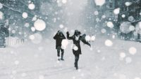 May snowstorm: 4 ways to track the Northeast's freakish 'winter' weather weekend
