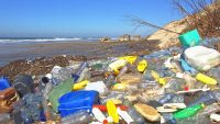 Ocean plastic is on track to triple by 2040