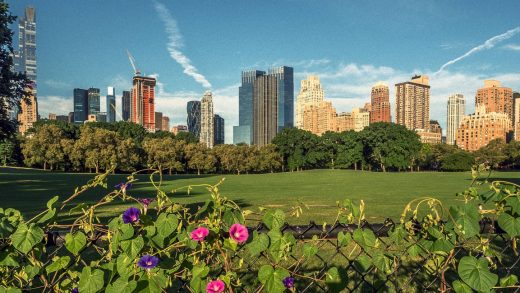 What if Central Park were home to a massive urban farm?