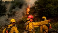 How to help California wildfire victims: 6 things you can do that take less than 5 minutes