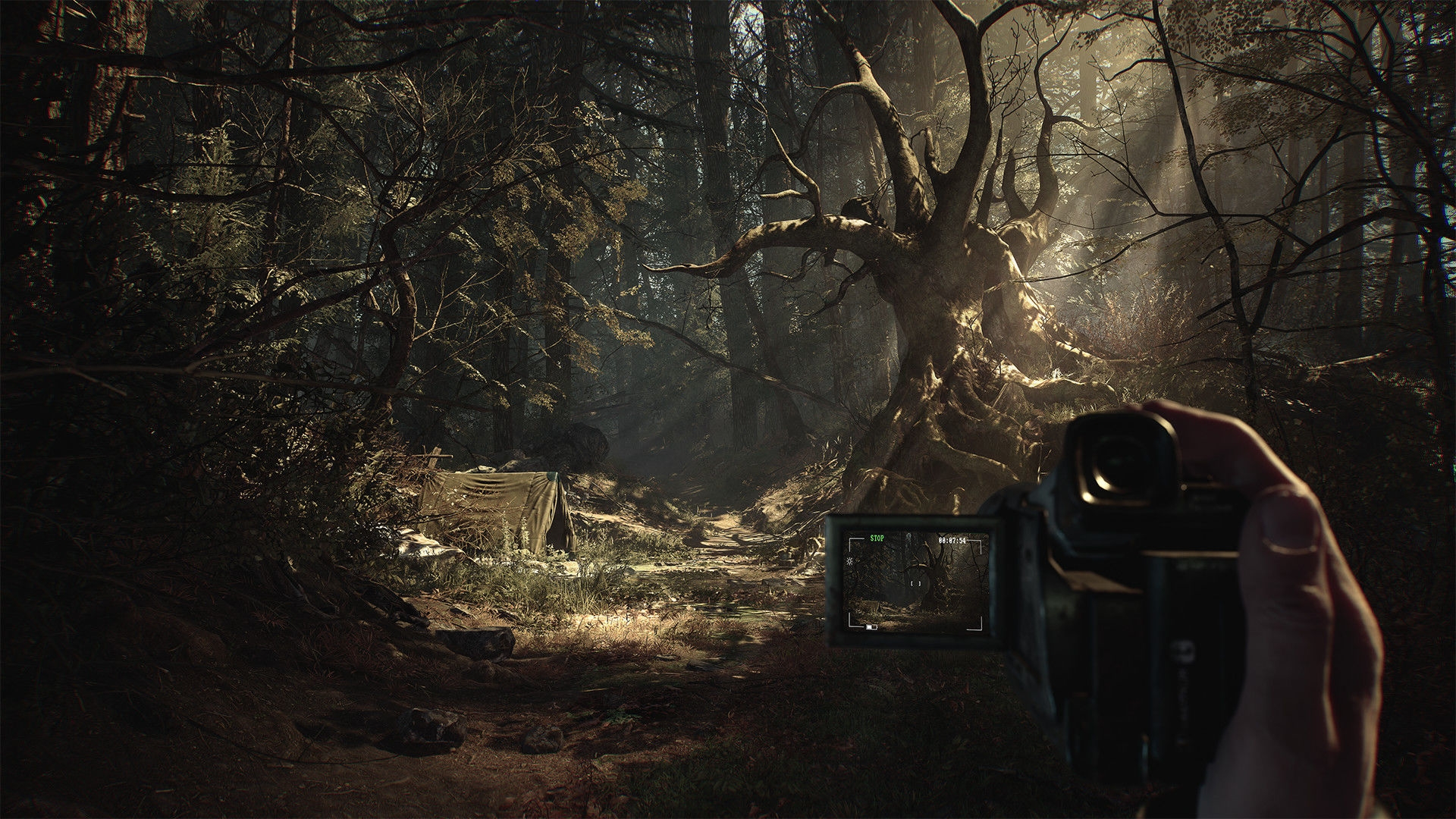 'Blair Witch' is headed to Oculus Quest VR ahead of Halloween   DeviceDaily.com