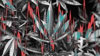 Cannabis stocks are blazing ahead of Election Day 2020