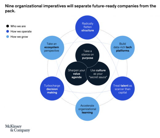 "How McKinsey and Company's ""Radically Better Organization"" Framework Applies to Freelancers"