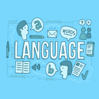 Features of an Online Translation Platform
