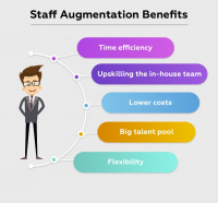 Staff Augmentation for the Internet of Things
