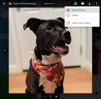Gmail will let you save image attachments directly to Google Photos
