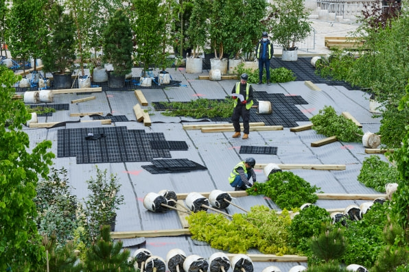 How to build an urban forest from scratch | DeviceDaily.com