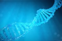 FDA Lifts Solid Bio Clinical Hold, Duchenne Study Cleared to Resume