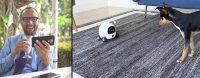 Won't Be Sad Leaving Your Beloved Pet at Home Rockirobot