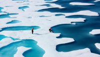 NASA scientists explain what's driving thedecline in Arctic sea ice
