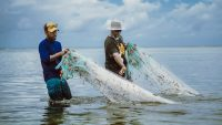 Why the Marshall Islands started a tuna fish company